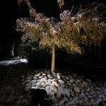 HandDadTV Winter Outdoor landscape lighting